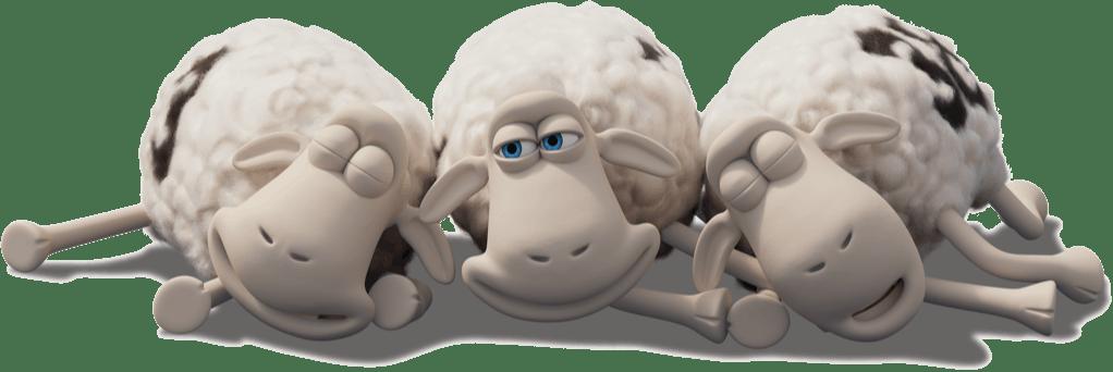 Owieczki Serta materace